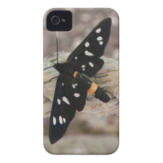 Butterflies priest Case-Mate iPhone 4 case