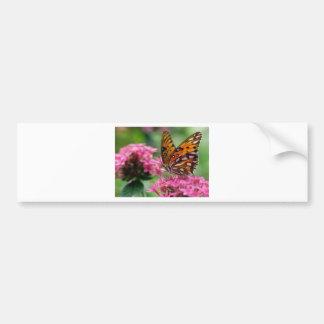 butterflies rounds social butterfly bumper sticker