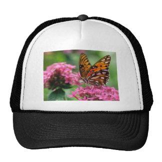 butterflies rounds social butterfly mesh hats