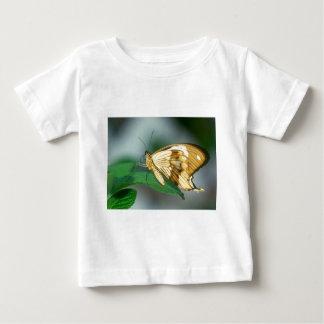 butterflies swallow tail butterfly tee shirt