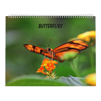 Butterflies Wall Calendar