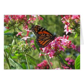 Butterflowers Card