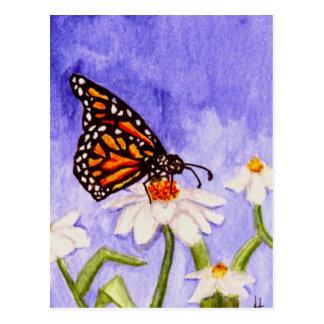 Butterfly 1 Postcard