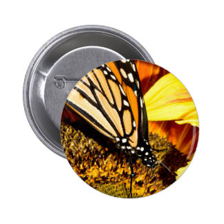 butterfly abstract pins