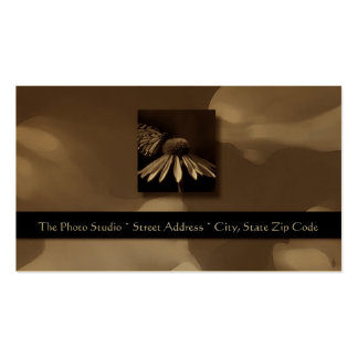 Butterfly Abstract Platinum on Black Business Card