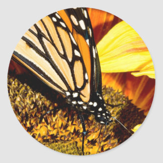 butterfly abstract sticker