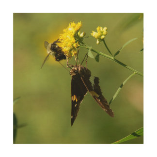 Butterfly and Bee, Wood Print. Wood Prints
