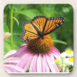 Butterfly and Cone Flower Drink Coasters