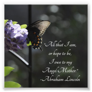 Butterfly and Flower To My Mother Lincoln Quote Art Photo