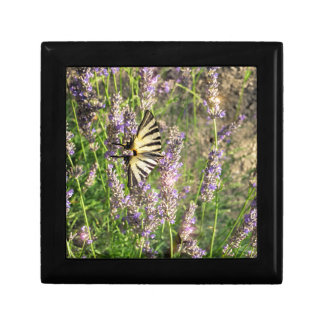 Butterfly and Lavender Gift Box