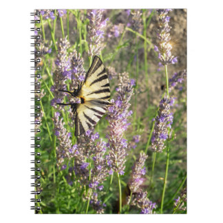 Butterfly and Lavender Notebooks