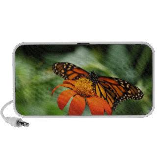 Butterfly and Orange Flower iPod Speaker