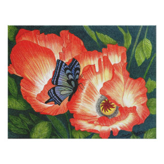 Butterfly and Poppies Poster