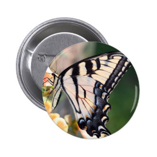 butterfly pinback button