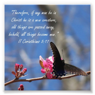 Butterfly Baptism 2 Corinthians 5:17 Verse Print Photograph