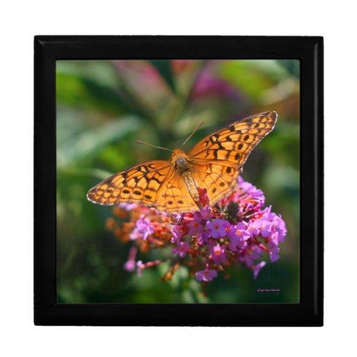 Butterfly Beauty Gift Box