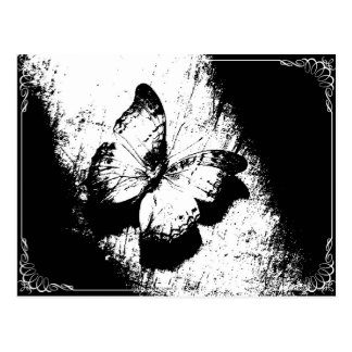 Butterfly Black and White Postcard