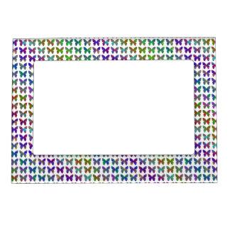 Butterfly bliss. magnetic frame