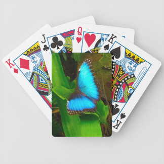 Butterfly Blue Close Up Bicycle Playing Cards