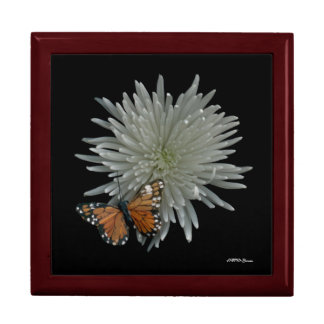 Butterfly Box Large Square Gift Box