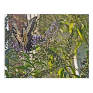 Butterfly Bush 2 Postcard