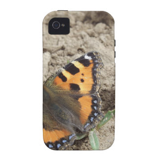 Butterfly Vibe iPhone 4 Cases