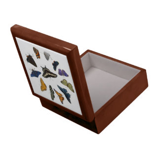 Butterfly Circle Gift Box