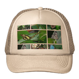 Butterfly Collage Hats