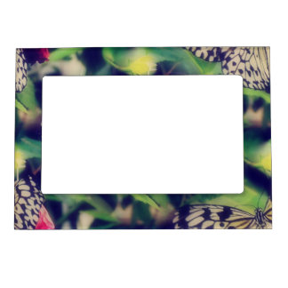 Butterfly Collage Magnetic Frame
