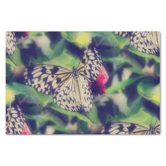 Butterfly Collage Tissue Paper