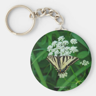 Butterfly Collection Classic Round Key Chain