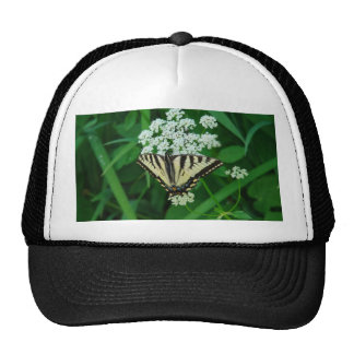 Butterfly Collection Hat