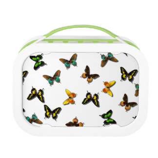 Butterfly Collection Lunchbox
