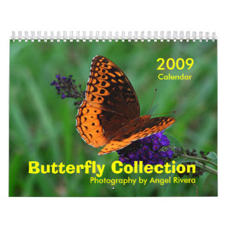 Butterfly Collection Wall Calendar