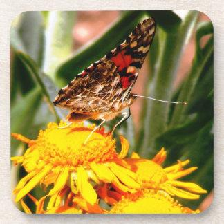 Butterfly Cork Drink Coaster 6 pk