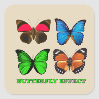 Butterfly effect square sticker