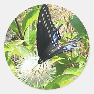 Butterfly Envelope Seal Sticker