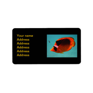 Butterfly Fish Address Label