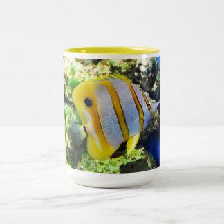Butterfly fish Two-Tone mug