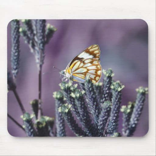 Butterfly Flitter Flutter vintage Mouse Pads
