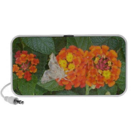 Butterfly/flower Doodle Mini Speaker