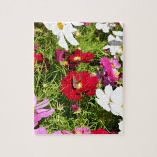 BUTTERFLY & FLOWERS AUSTRALIA JIGSAW PUZZLE
