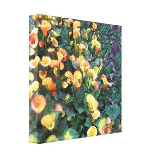 Butterfly Garden Las Vegas - Colorful Happy Times Stretched Canvas Prints