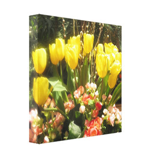 Butterfly Garden Las Vegas - TULIP Golden Yellow G Stretched Canvas Print