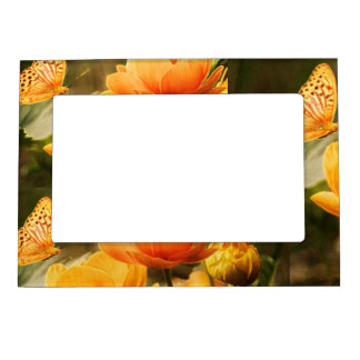 BUTTERFLY GARDEN MAGNETIC PICTURE FRAME
