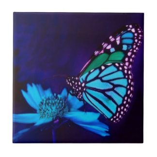 Butterfly In Blue Light Small Square Tile