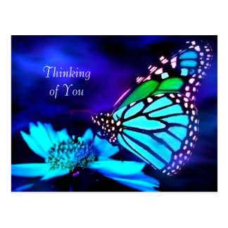 Butterfly in Blue Light - Thinking of You Postcard