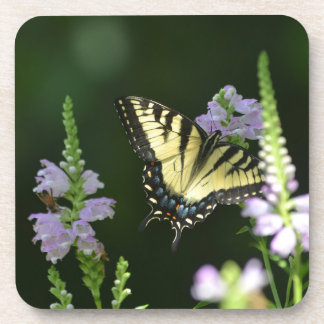 Butterfly In The Garden Drink Coasters