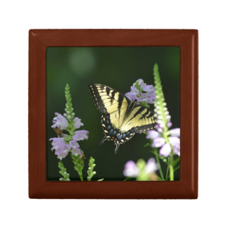 Butterfly In The Garden Small Square Gift Box