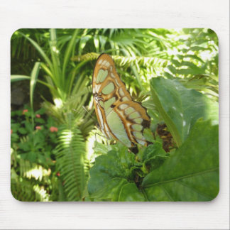 Butterfly in Tropical Leaves Nature Photography Mouse Pad